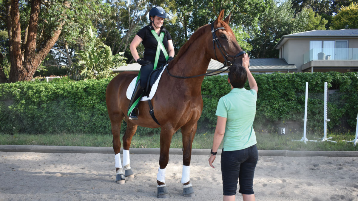 mornington peninsula horse riding assessment